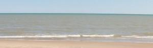 cropped-cropped-beach032610-0011.jpg