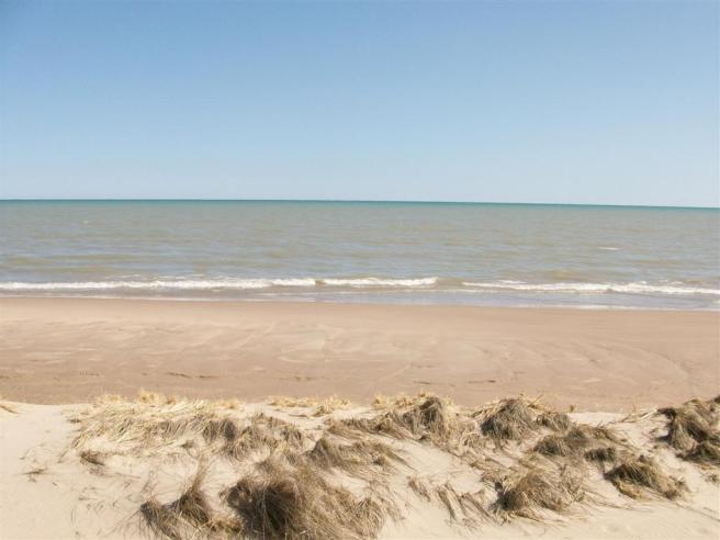 Beach032610 001