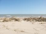 Beach032610 004